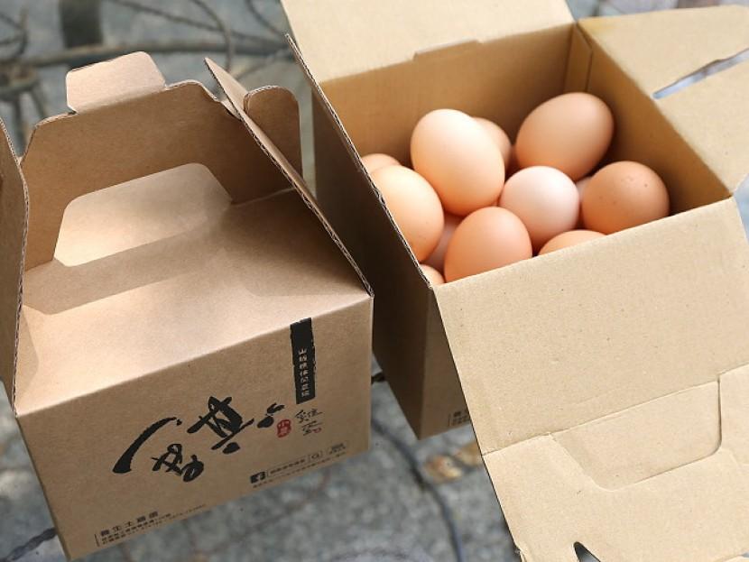 雞蛋-2公斤裝-A