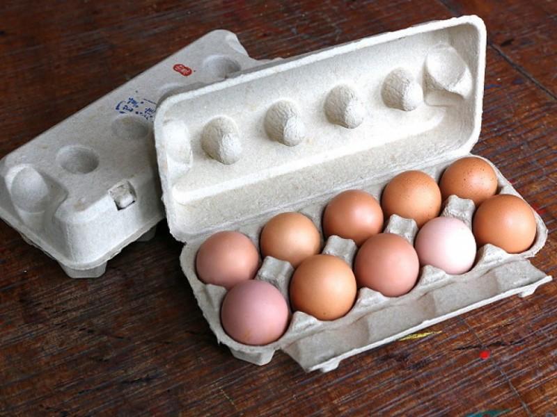 放牧土雞蛋 (10粒裝)